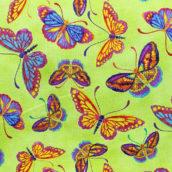 Mariposas fondo verde