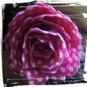 flor colgante kit