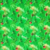 Petits Lapins Verde 08