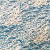 Tela Mar Landscape 6